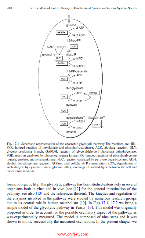 《Advances in H∞ Control Theory:Switched, Delayed, and Biological Systems》