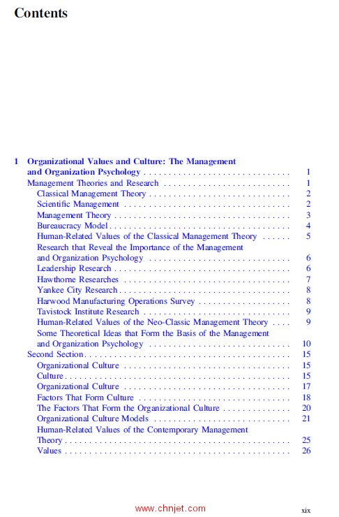 《Values, Ergonomics and Risk Management in Aviation Business Strategy》